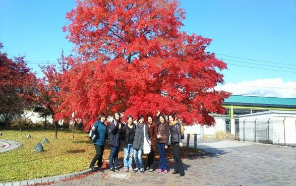 佐久平駅に到着の日、秋のもみじに 感動していました。