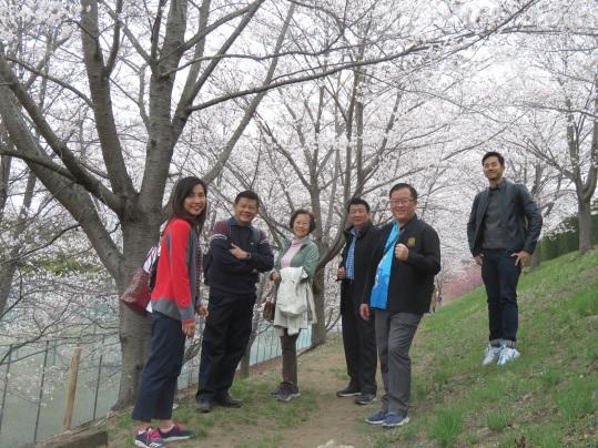 はじめて一般公開された本学の「桜の小道」の通り抜けを楽しまれた
